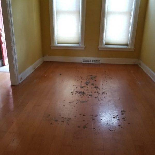 living-room2-after